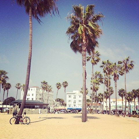 Soaking up the rays in Venice Beach.